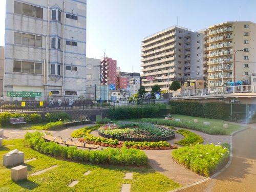 大横川親水公園1